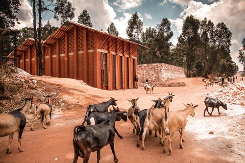Children Library of Muyinga (Burundi, Africa), BC architects & studies; photo: KRUH.