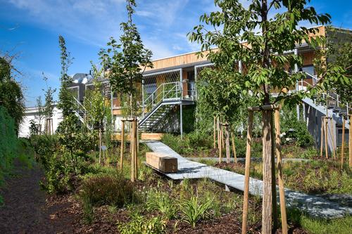 Zpobytové terasy je přístupná zelená oáza, ve které mohou zaměstnanci trávit přestávky při práci; parkově upraveny jsou ostatně veškeré plochy vareálu, jež neslouží manipulaci.