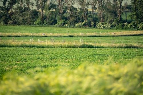 Vítězem kategorie Volná krajina v soutěží Adapterra Awards 2019 se stala obnova krajiny na Zálúčí u Blatničky, kde zemědělec Martin Smetana rozdělil 65 ha monokulturních lánů do malých políček; foto: Vojta Herout.